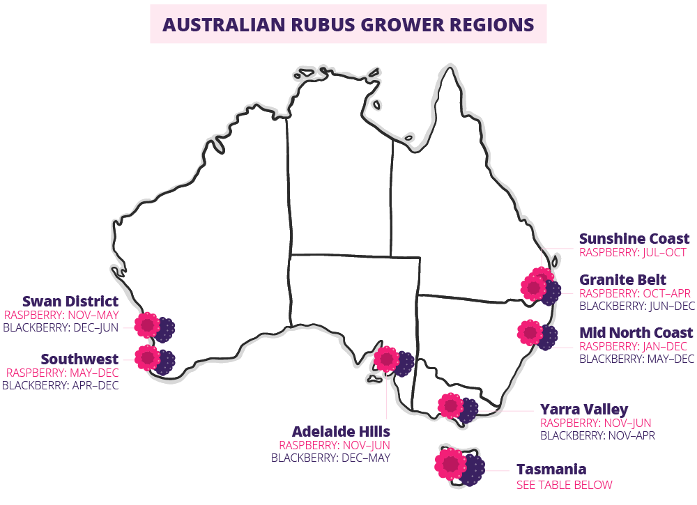 Map of Australia showing growing regions for Rubus